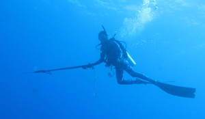 Hazell's Water World Dive Shop - Diver Supply Barbados - All your equipment needs to spearfish and freedive